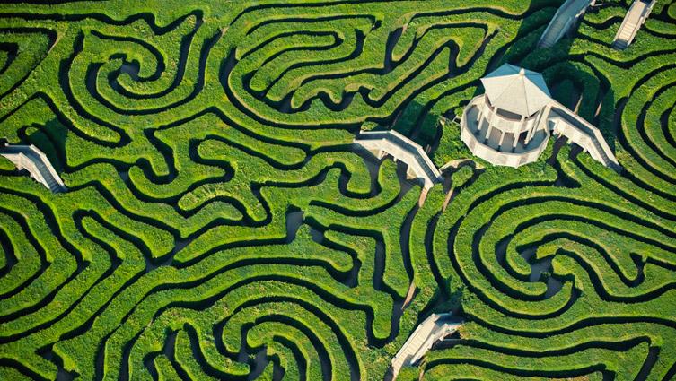 Finding a Way Maze